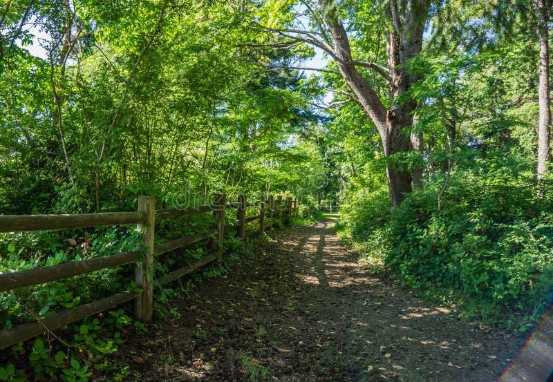 Cerca de madeira And Path 2 fotografia de stock royalty free