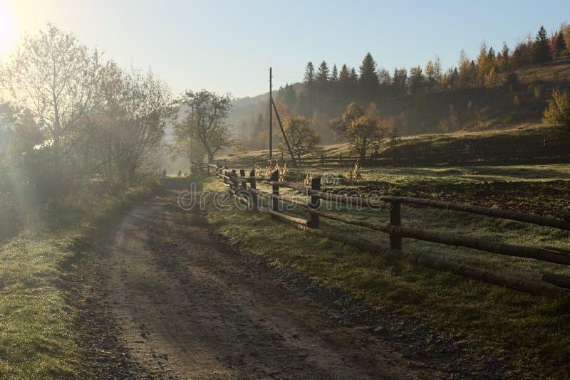 Cerca de madeira velha ao longo da estrada rural da sujeira na manhã adiantada do outono fotos de stock royalty free