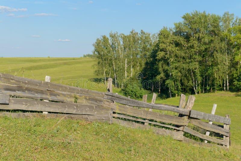 Cerca de madeira velha em um prado fotografia de stock royalty free