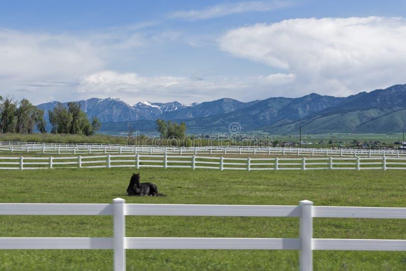 Cerca de madera blanca en Wyoming fotos de archivo libres de regalías