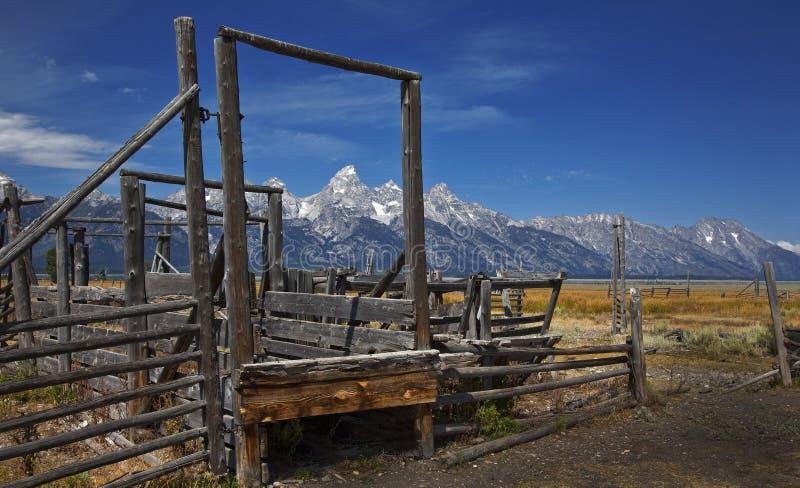 Cerca de madera, parque nacional magnífico de Tetons, Wyoming imagen de archivo