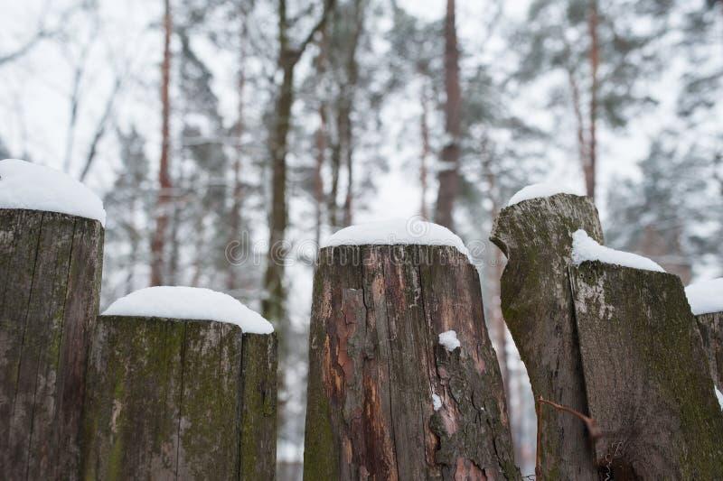 Cerca de madera rural vieja nevada en invierno imágenes de archivo libres de regalías