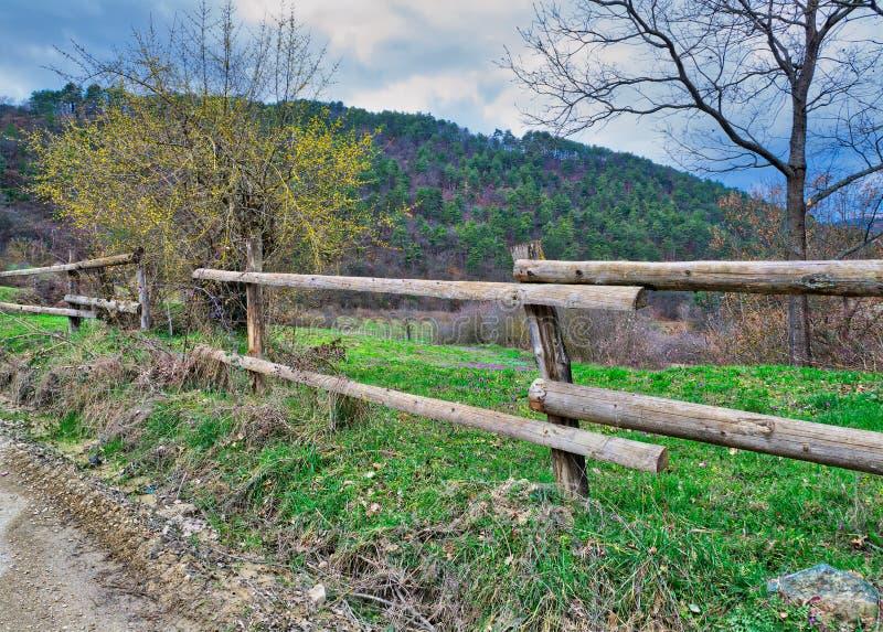 Cerca de madera vieja, árboles, hierba verde, y cielo nublado azul en prado verde imagenes de archivo
