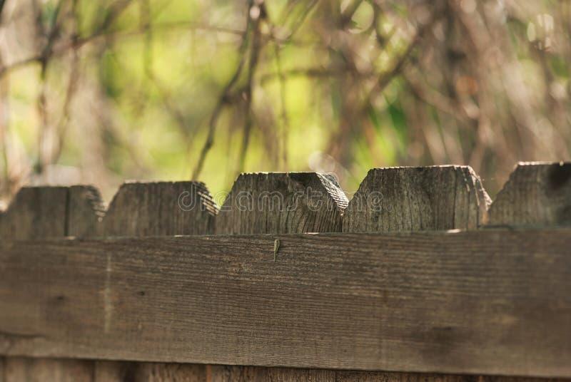Cerca de piquete de madeira foto de stock royalty free