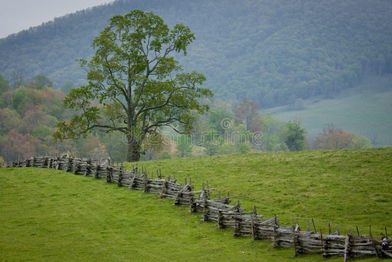 A cerca de trilho rachado cruza um pasto verde da montanha. foto de stock