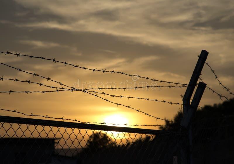 Cerca del alambre de púas en la puesta del sol foto de archivo