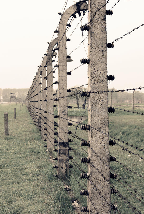 Cerca do arame farpado de Auschwitz fotografia de stock royalty free