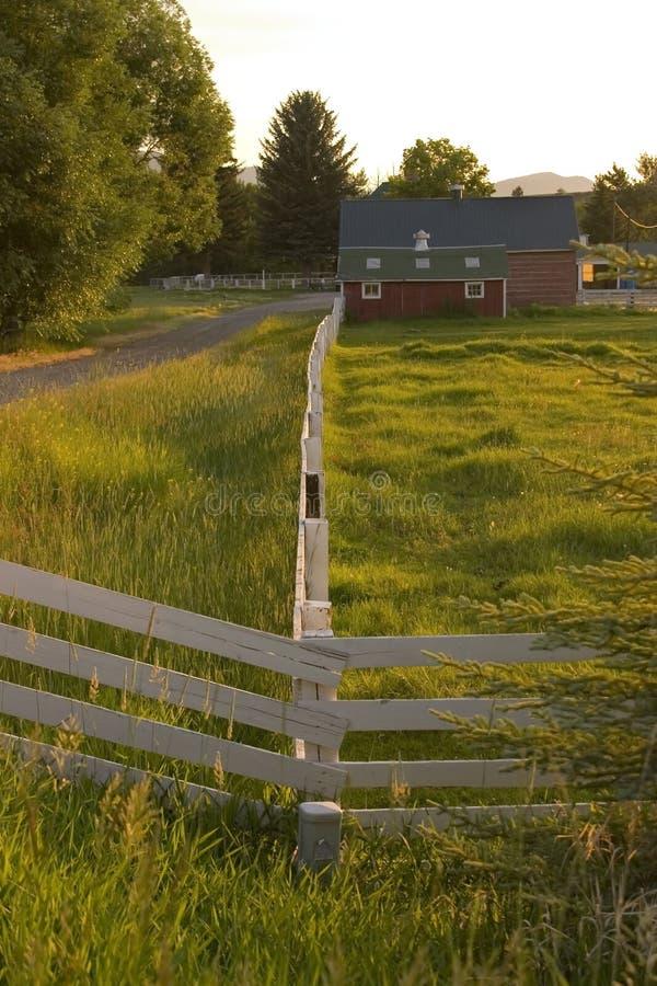 Cerca do campo que conduz a um rancho imagens de stock royalty free