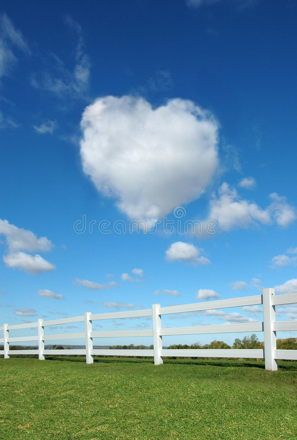 Cerca e coração fotografia de stock