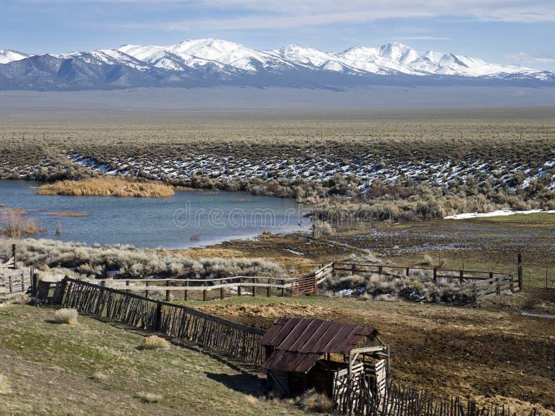 Cerca e lagoa velhas em Nevada central norte imagem de stock royalty free