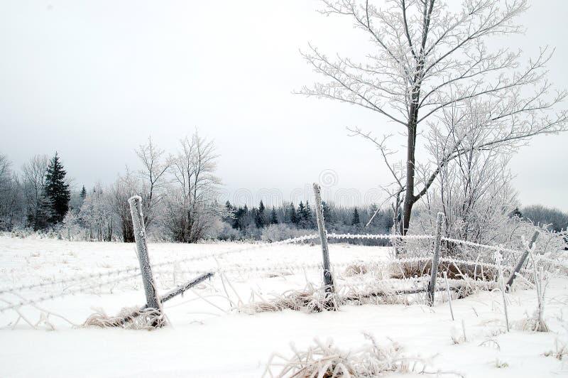 Download Cerca esquecida longa imagem de stock. Imagem de árvore - 54343