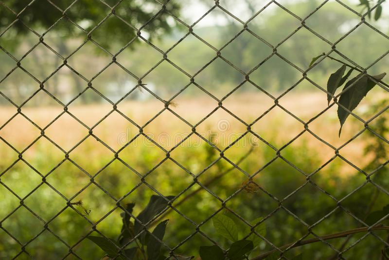 Cerca hecha del acero atado con alambre diseñado en colador con el campo de fútbol rural borroso en fondo fotografía de archivo