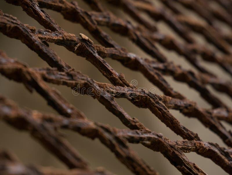 Cerca oxidada, corroída da malha do metal, close up no ângulo foto de stock