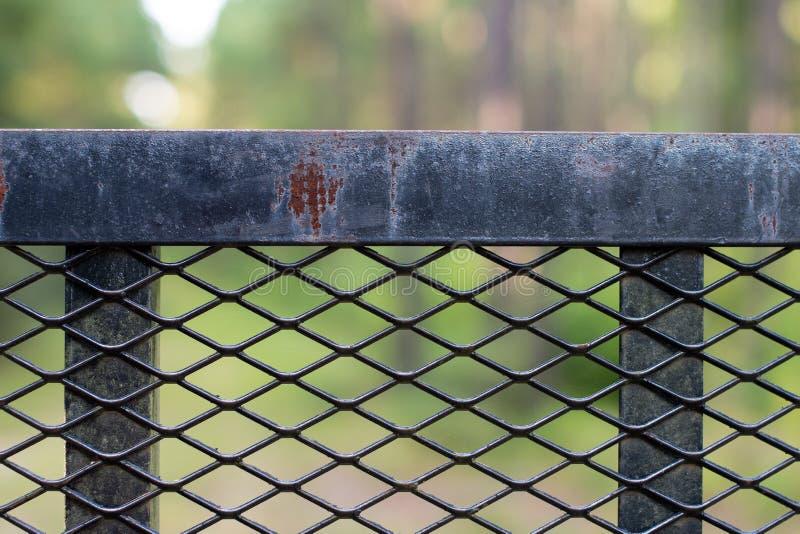 Cerca preta resistida do ferro na floresta imagens de stock royalty free