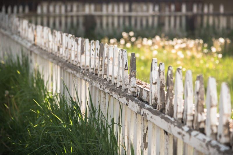 Cerca rústica e hierba desalinada fotografía de archivo