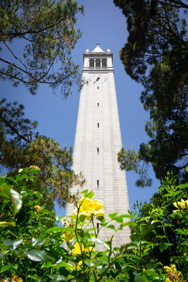 Cercando dalla base della torre di Sather il campanile su un fondo del cielo blu, Uc Berkeley, San Francisco Bay, California immagini stock libere da diritti