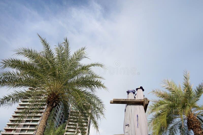Cercando le palme con l'hotel alla spiaggia di Pattaya su cielo blu e sulla nuvola come fondo immagini stock libere da diritti