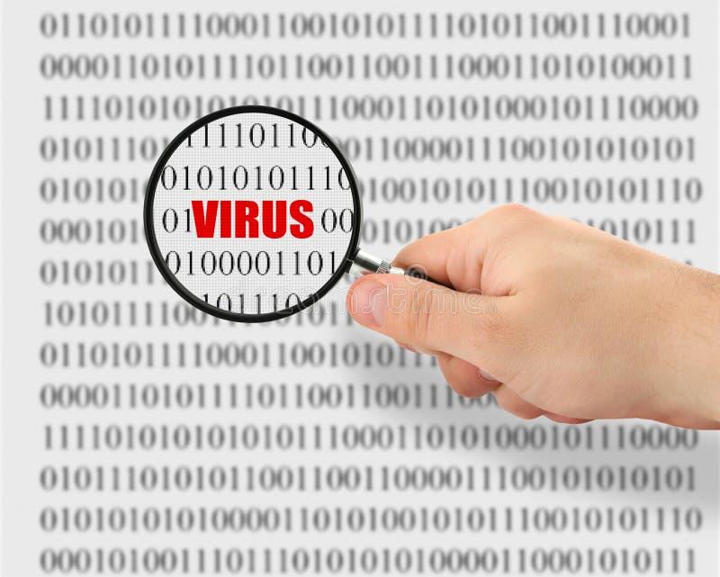 Cercando un virus informatico immagini stock