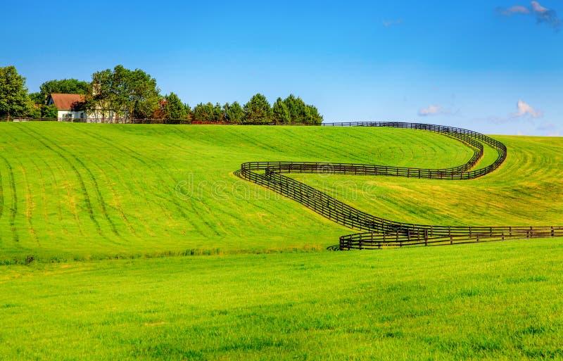 Cercas da exploração agrícola do cavalo foto de stock royalty free