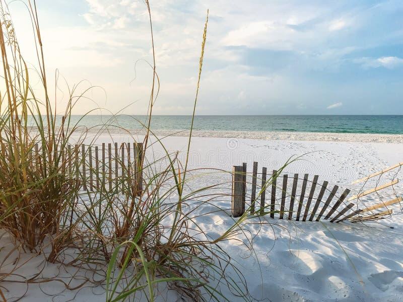 Cercas de la arena y avena del mar en la playa de la Florida en la salida del sol fotografía de archivo