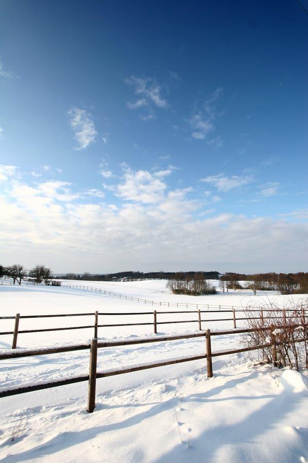 Cercas del invierno imagen de archivo libre de regalías