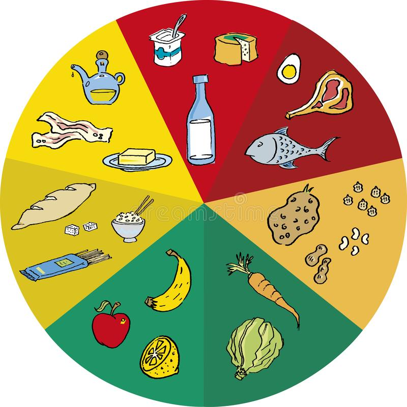Cerchio dell'alimento dei pasti della latteria selezionati dal gruppo illustrazione vettoriale