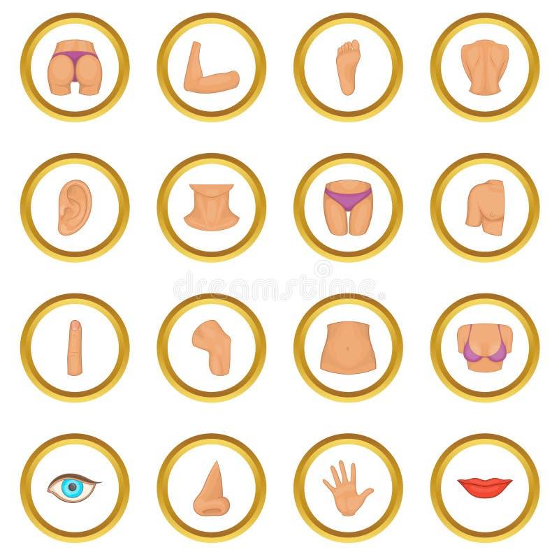 Cerchio delle icone delle parti del corpo illustrazione di stock