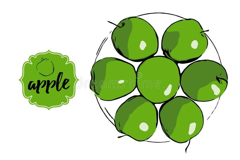 Cerchio delle mele di vettore con l'autoadesivo Piatto disegnato a mano con le mele fresche royalty illustrazione gratis