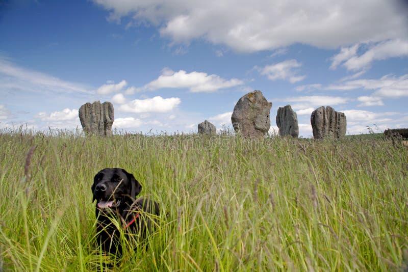 Cerchio di pietra di Duddo fotografia stock