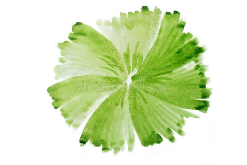 Cerchio fatto a mano dell'estratto verde dell'acquerello fotografie stock libere da diritti