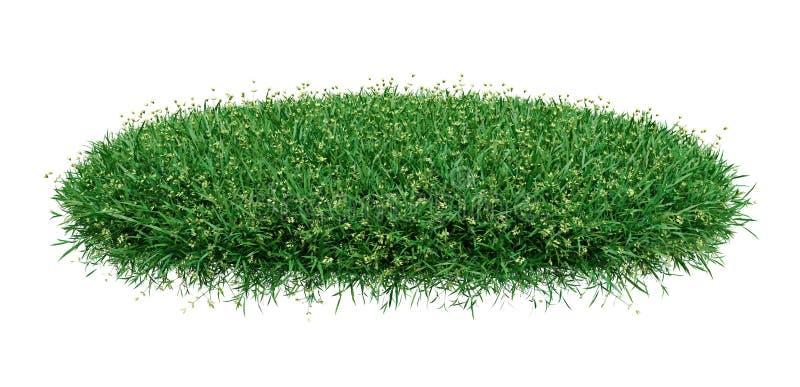 Cercle d'herbe d'isolement sur le fond blanc illustration libre de droits
