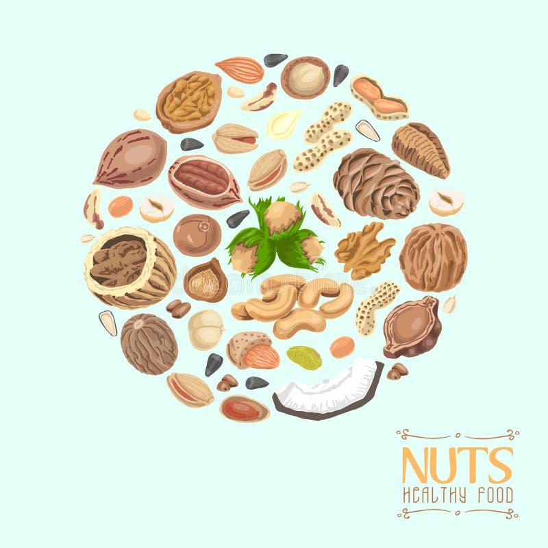cercle des écrous et des graines illustration libre de droits
