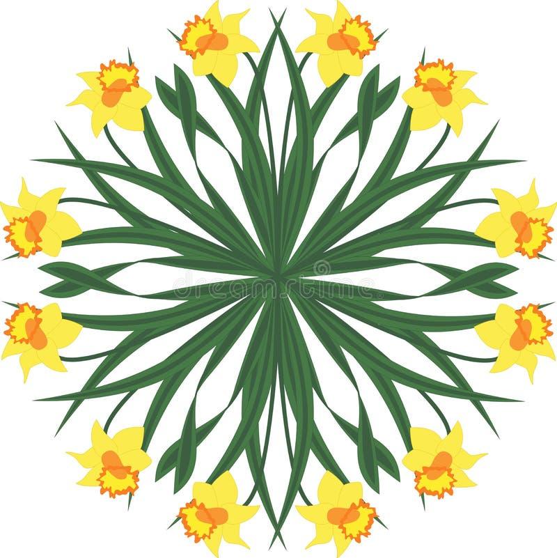 Cercle du narcisse jaune - illustration de vecteur images stock