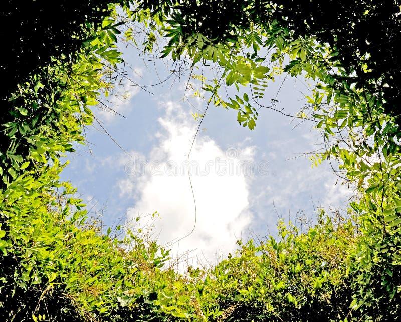 Cercle et ciel photos libres de droits