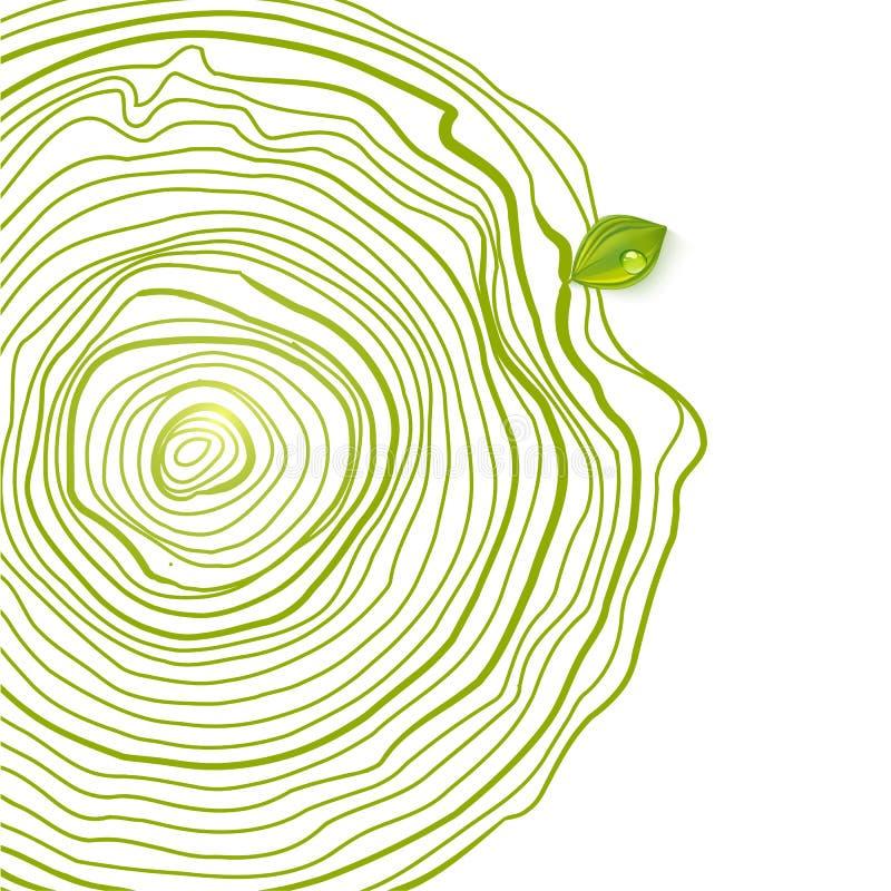 Cercles écologiques verts de dessin avec la feuille illustration stock