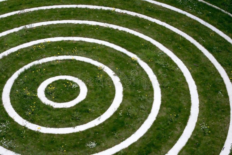 Cercles concentriques image libre de droits