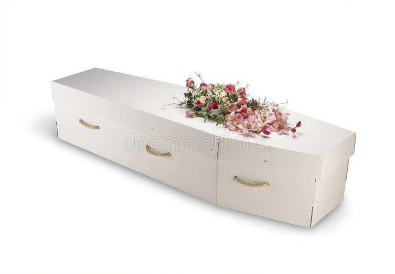 Cercueil biodégradable d'eco de carton d'isolement avec photographie stock libre de droits