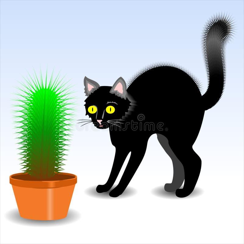 Cerda do cacto do gato ilustração do vetor