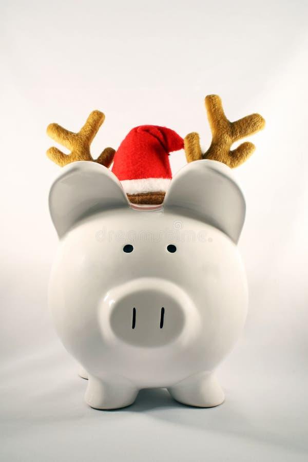 Cerdo de la Navidad fotografía de archivo libre de regalías