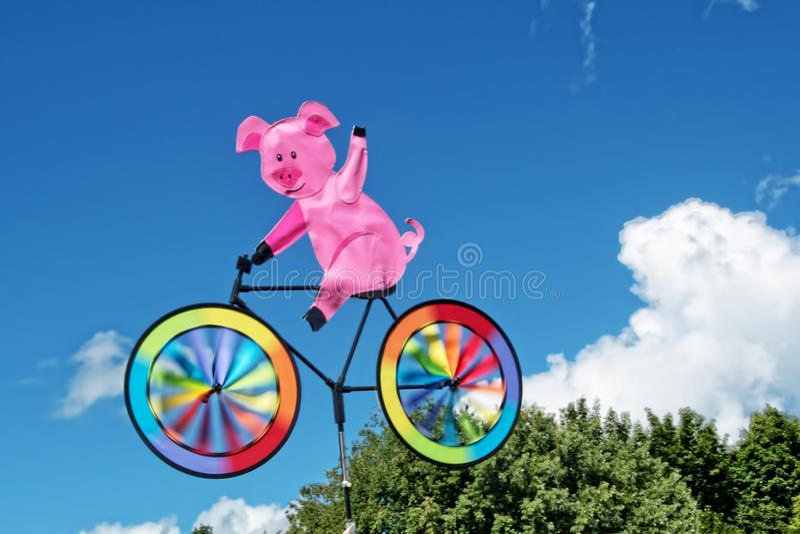 Cerdo en un molinillo de viento de la bicicleta imagen de archivo