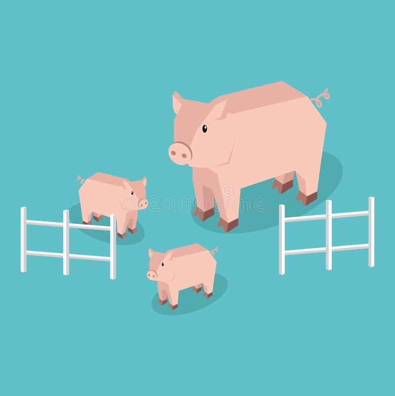 Cerdo isométrico con los cochinillos aislados ilustración del vector