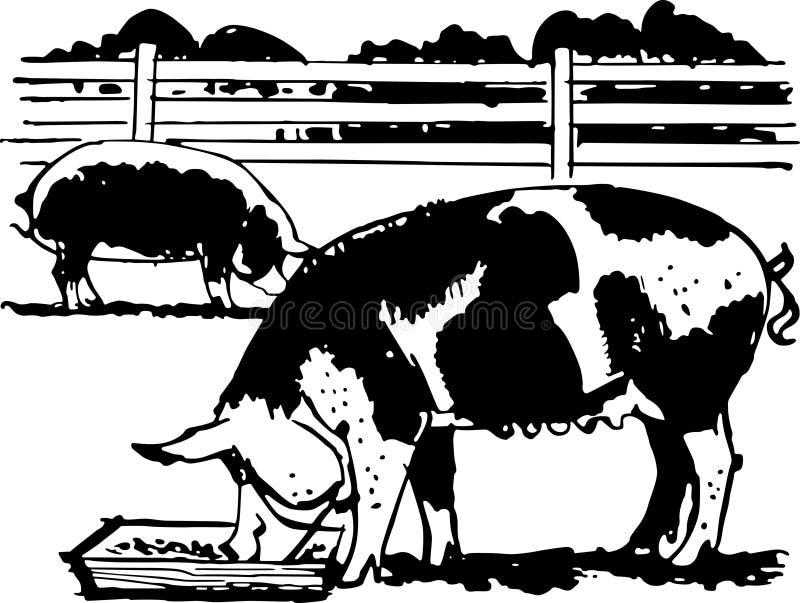 Cerdos de la granja stock de ilustración