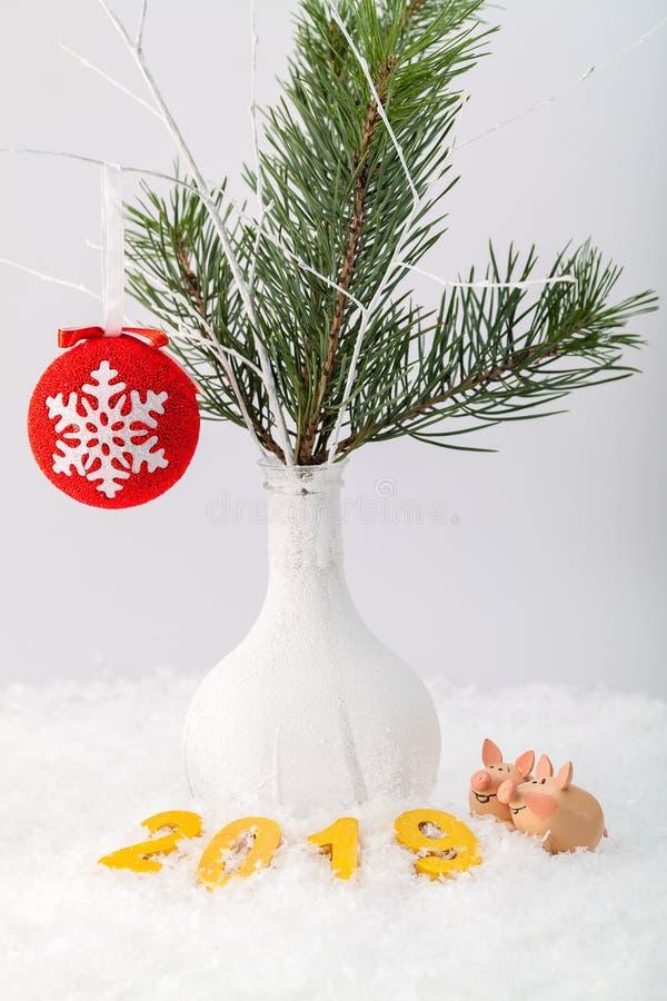 Cerdos divertidos debajo del árbol del día de fiesta imágenes de archivo libres de regalías