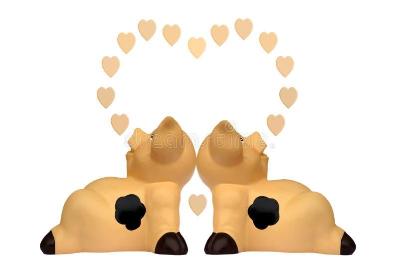 Cerdos en amor imagen de archivo libre de regalías