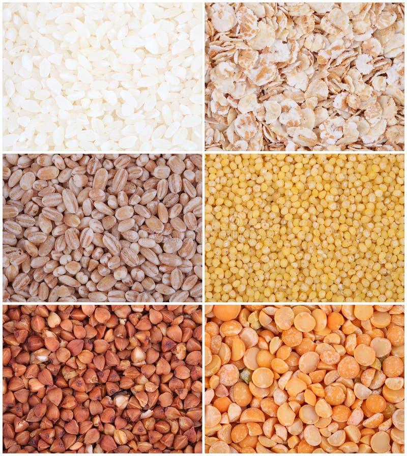 Cereais ajustados. Arroz, ervilhas, farinha de aveia, cevada, painço, trigo mourisco foto de stock