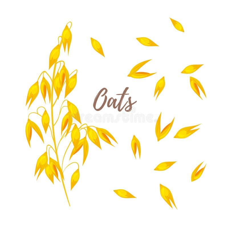 Cereais - aveia e sementes ilustração do vetor
