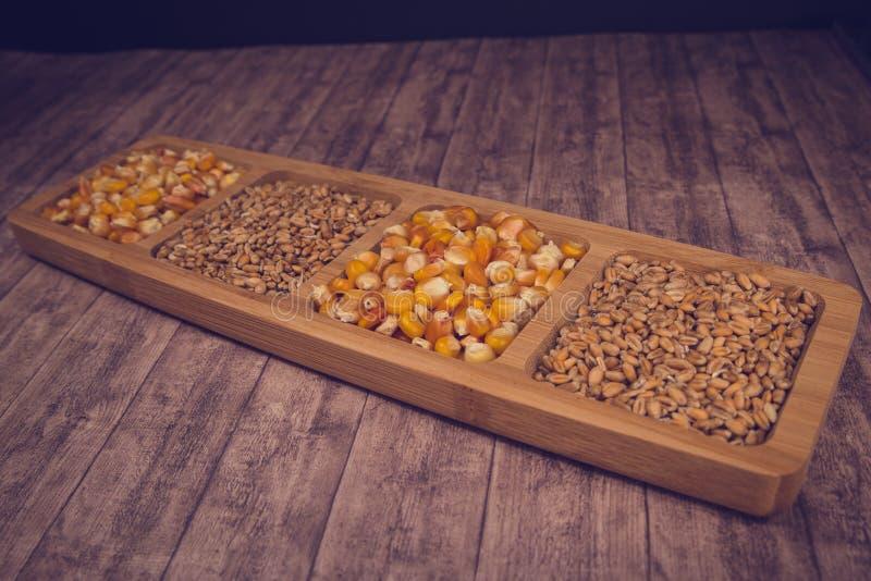 Cereais: trigo, milho fotografia de stock