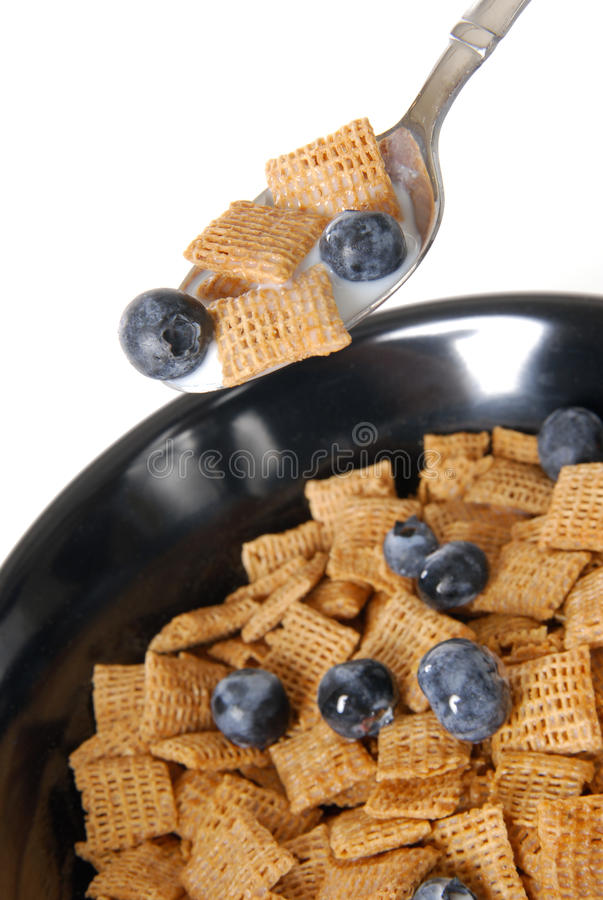 Download Cereal with blueberries stock photo. Image of blueberries - 19983996