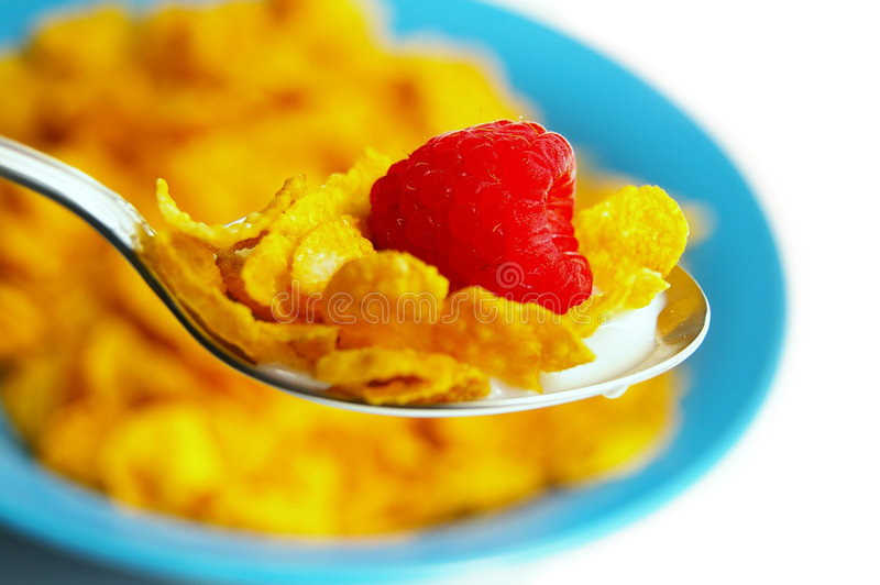 Cereal bowl royalty free stock photos