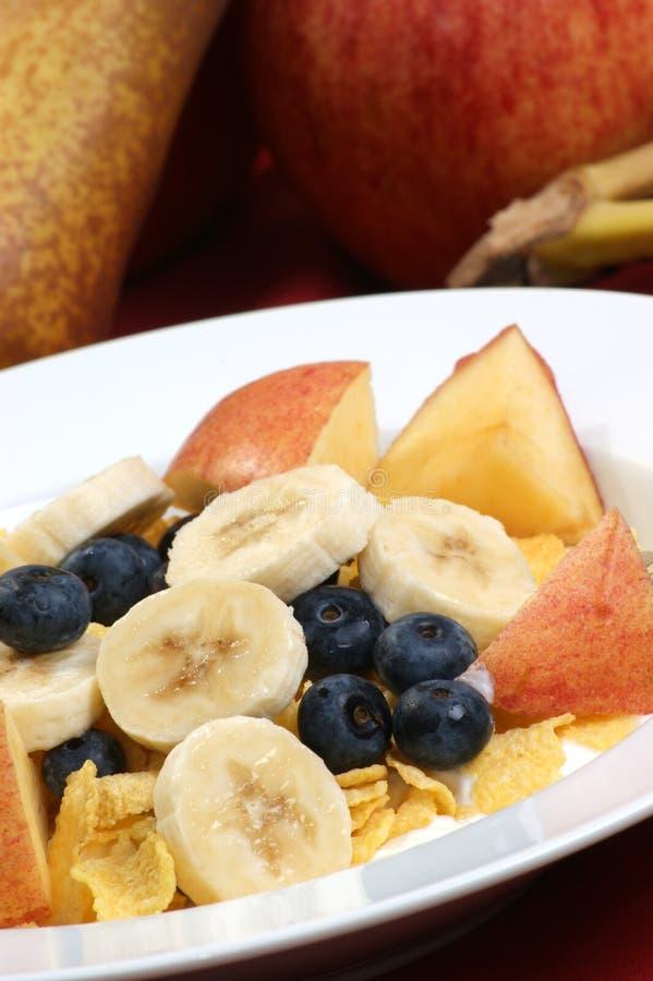 Cereal com leite fotografia de stock royalty free